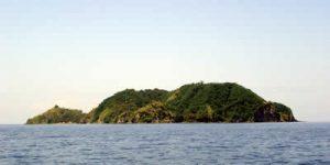 APO ISLAND SAFARI