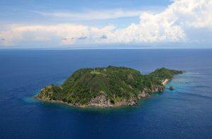 Apo Island dive trips