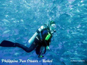 under sea scuba diving bohol