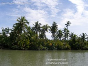 Philippine Fun Divers Alona Beach Panglao Bohol Adventure trip Loboc River