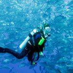 Philippine Fun Divers - Divers Alona Beach Panglao Bohol 11