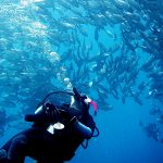 Philippine Fun Divers - Divers Alona Beach Panglao Bohol 12
