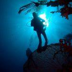 Philippine Fun Divers - Divers Alona Beach Panglao Bohol diver and sun