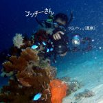 Philippine Fun Divers - Divers Alona Beach Panglao Bohol 7