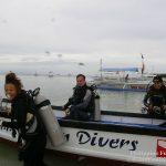Philippine Fun Divers - Divers Alona Beach Panglao Bohol Holger Horn