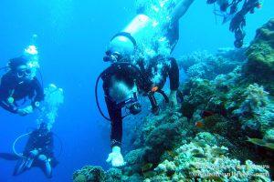 Philippine Fun Divers - Divers Alona Beach Panglao Bohol President Ramos 6