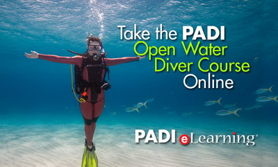 PADI Dive Cources